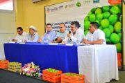 Yucatán, sede de foro para certificar huertos de limón persa