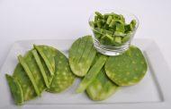 Comer nopal te ayuda a bajar calorías y reduce el colesterol