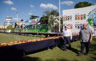 Internos del CERESO disfrutan una mega rosca de Reyes de 300 metros y dos mil muñequitos