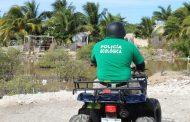La Policía Ecológica de Progreso detiene a tres albañiles, por dañar la ciénaga