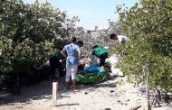 Recolectan más de 9 toneladas de basura en el primer día de limpieza de los manglares de Progreso