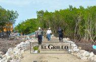 Una tibia respuesta de la PROFEPA, en el lío de la reserva de Río Lagartos