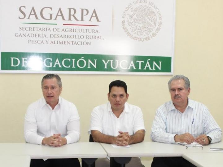 Funcionarios de Sagarpa estafan a productores