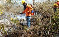 Por quemar basura, incendia media hectárea de monte, en Oxkutzcab