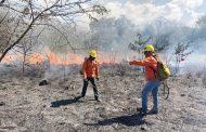 Se queman tres hectáreas de zacatal, en Oxkutzcab: logran controlar y apagar el fuego